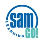 SAM learning